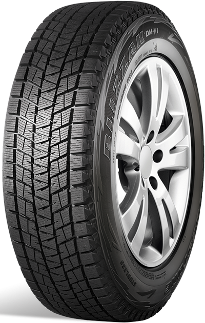 BRIDGESTONE DM-V1 225/55 R 19
