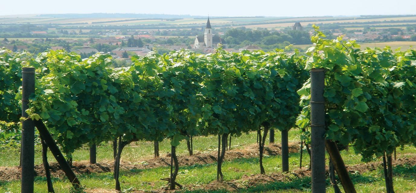 Vinařství Weinwurm
